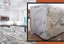 Stylish Viscon White Granite